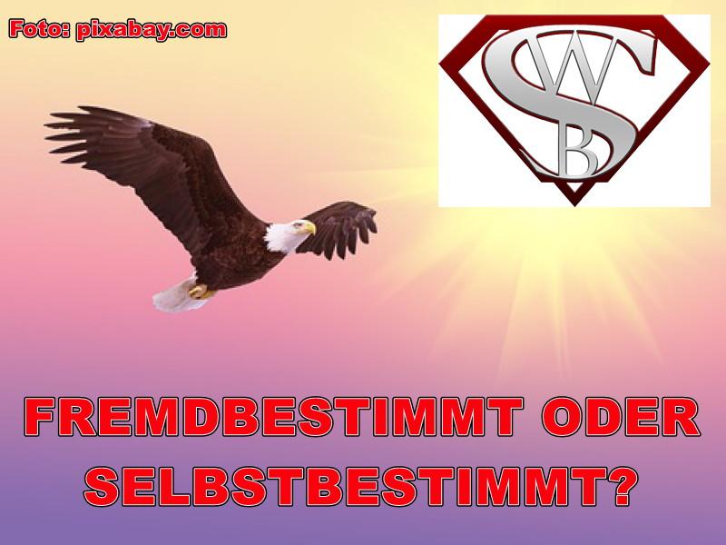 Blogbeitrag FREMDBESTIMMT ODER SELBSTBESTIMMT