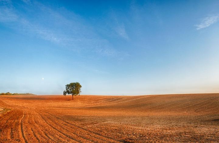 landscape-3712404_960_720